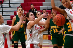 Gallery CIAC Girls Basketball; Wolcott vs. Holy Cross - Photo # 110