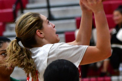 Gallery CIAC Girls Basketball; Wolcott vs. Holy Cross - Photo # 119