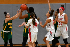 Gallery CIAC Girls Basketball; Wolcott vs. Holy Cross - Photo # 120
