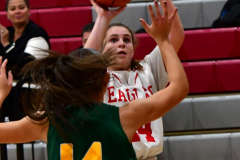 Gallery CIAC Girls Basketball; Wolcott vs. Holy Cross - Photo # 171