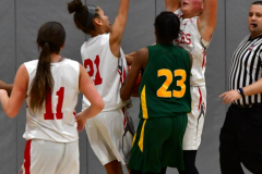 Gallery CIAC Girls Basketball; Wolcott vs. Holy Cross - Photo # 174