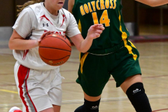 Gallery CIAC Girls Basketball; Wolcott vs. Holy Cross - Photo # 180