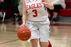 Gallery CIAC Girls Basketball; Wolcott vs. Holy Cross - Photo # 202