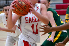 Gallery CIAC Girls Basketball; Wolcott vs. Holy Cross - Photo # 211