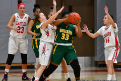 Gallery CIAC Girls Basketball; Wolcott vs. Holy Cross - Photo # 238