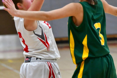 Gallery CIAC Girls Basketball; Wolcott vs. Holy Cross - Photo # 245