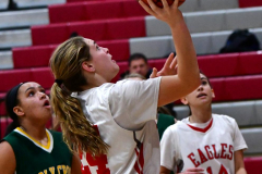 Gallery CIAC Girls Basketball; Wolcott vs. Holy Cross - Photo # 255