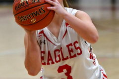 Gallery CIAC Girls Basketball; Wolcott vs. Holy Cross - Photo # 285