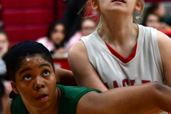 Gallery CIAC Girls Basketball; Wolcott vs. Holy Cross - Photo # 288