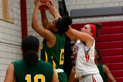 Gallery CIAC Girls Basketball; Wolcott vs. Holy Cross - Photo # 296