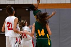 Gallery CIAC Girls Basketball; Wolcott vs. Holy Cross - Photo # 301