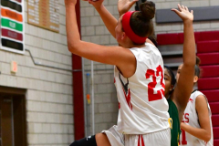 Gallery CIAC Girls Basketball; Wolcott vs. Holy Cross - Photo # 303