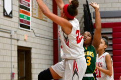 Gallery CIAC Girls Basketball; Wolcott vs. Holy Cross - Photo # 304