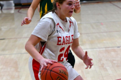 Gallery CIAC Girls Basketball; Wolcott vs. Holy Cross - Photo # 308
