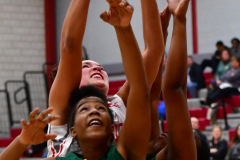 Gallery CIAC Girls Basketball; Wolcott vs. Holy Cross - Photo # 310