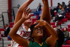 Gallery CIAC Girls Basketball; Wolcott vs. Holy Cross - Photo # 311