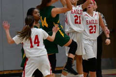 Gallery CIAC Girls Basketball; Wolcott vs. Holy Cross - Photo # 337