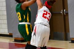 Gallery CIAC Girls Basketball; Wolcott vs. Holy Cross - Photo # 340