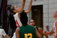 Gallery CIAC Girls Basketball; Wolcott vs. Holy Cross - Photo # 342