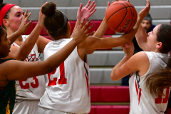 Gallery CIAC Girls Basketball; Wolcott vs. Holy Cross - Photo # 364