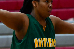 Gallery CIAC Girls Basketball; Wolcott vs. Holy Cross - Photo # 376