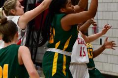 Gallery CIAC Girls Basketball; Wolcott vs. Holy Cross - Photo # 404