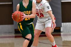 Gallery CIAC Girls Basketball; Wolcott vs. Holy Cross - Photo # 414
