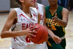 Gallery CIAC Girls Basketball; Wolcott vs. Holy Cross - Photo # 420