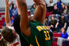 Gallery CIAC Girls Basketball; Wolcott vs. Holy Cross - Photo # 428