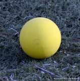 Gallery CIAC Girls Lacrosse; Wolcott 3 vs. Housatonic Regional 18 (201)-