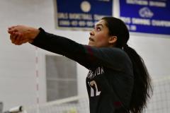 CIAC Girls Volleyball; Bristol Eastern vs. Farmington - Photo # 1021