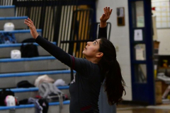 CIAC Girls Volleyball; Bristol Eastern vs. Farmington - Photo # 808