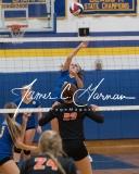 CIAC Girls Volleyball Class M State SR - #3 Seymour 3 vs. #14 Plainfield 0 (17)