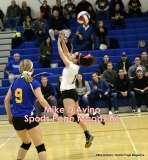 Gallery CIAC Girls Volleyball Class M Tournament SF's - #3 Seymour 3 vs. #7 Granby 1 - Photo # (132)