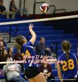 Gallery CIAC Girls Volleyball Class M Tournament SF's - #3 Seymour 3 vs. #7 Granby 1 - Photo # (135)
