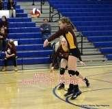 Gallery CIAC Girls Volleyball Class M Tournament SF's - #3 Seymour 3 vs. #7 Granby 1 - Photo # (143)