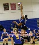 Gallery CIAC Girls Volleyball Class M Tournament SF's - #3 Seymour 3 vs. #7 Granby 1 - Photo # (165)
