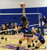 Gallery CIAC Girls Volleyball Class M Tournament SF's - #3 Seymour 3 vs. #7 Granby 1 - Photo # (182)