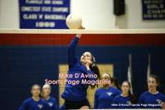 Gallery CIAC Girls Volleyball Class M Tournament SF's - #3 Seymour 3 vs. #7 Granby 1 - Photo # (19)