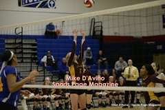 Gallery CIAC Girls Volleyball Class M Tournament SF's - #3 Seymour 3 vs. #7 Granby 1 - Photo # (197)