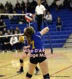 Gallery CIAC Girls Volleyball Class M Tournament SF's - #3 Seymour 3 vs. #7 Granby 1 - Photo # (205)