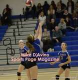 Gallery CIAC Girls Volleyball Class M Tournament SF's - #3 Seymour 3 vs. #7 Granby 1 - Photo # (216)