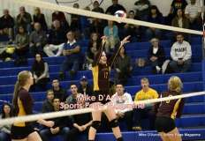 Gallery CIAC Girls Volleyball Class M Tournament SF's - #3 Seymour 3 vs. #7 Granby 1 - Photo # (249)