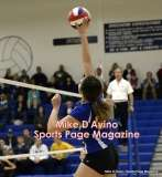 Gallery CIAC Girls Volleyball Class M Tournament SF's - #3 Seymour 3 vs. #7 Granby 1 - Photo # (251)