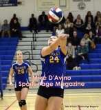 Gallery CIAC Girls Volleyball Class M Tournament SF's - #3 Seymour 3 vs. #7 Granby 1 - Photo # (258)