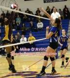 Gallery CIAC Girls Volleyball Class M Tournament SF's - #3 Seymour 3 vs. #7 Granby 1 - Photo # (265)