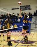 Gallery CIAC Girls Volleyball Class M Tournament SF's - #3 Seymour 3 vs. #7 Granby 1 - Photo # (266)