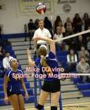 Gallery CIAC Girls Volleyball Class M Tournament SF's - #3 Seymour 3 vs. #7 Granby 1 - Photo # (273)
