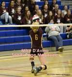 Gallery CIAC Girls Volleyball Class M Tournament SF's - #3 Seymour 3 vs. #7 Granby 1 - Photo # (274)