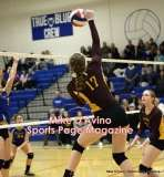 Gallery CIAC Girls Volleyball Class M Tournament SF's - #3 Seymour 3 vs. #7 Granby 1 - Photo # (278)